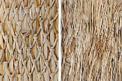 Mexican palm thatch roll product image.