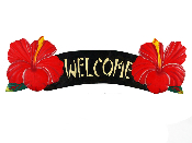 welcome red hibiscus sign product image